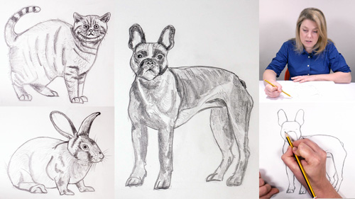 How to Draw a Cat, A Rabbit and a Dog